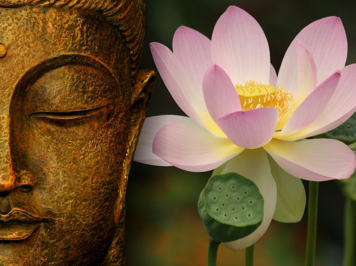 01/02/19 | Fiore di loto: simbolismo, spiritualità, illuminazione