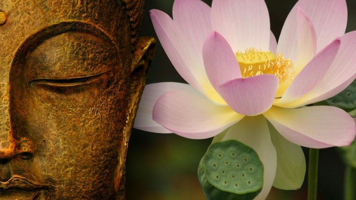 Corso di MEDITAZIONE e rilassamento – IN PRESENZA alternata a ON LINE